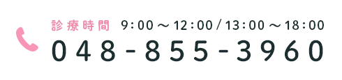 診療時間 9:00~12:00 / 13:00~18:00 048-855-3960